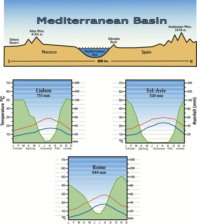 Mediterranean basin landscape for Mediterranean elevation